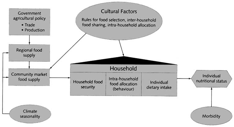 Phd dissertation writing on food security populatin growth literature review