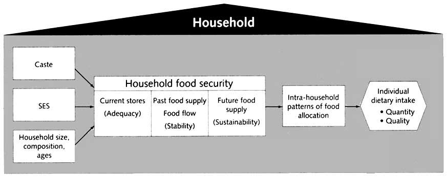 Food security phd thesis